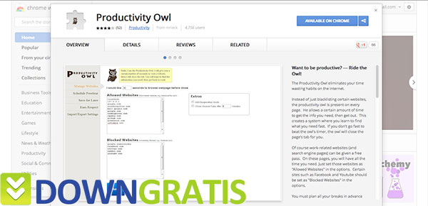 Tela do Productivity Owl