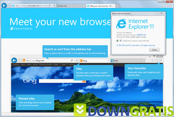 Tela do Internet Explorer 11