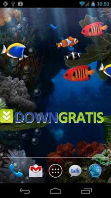 Aquarium-Live