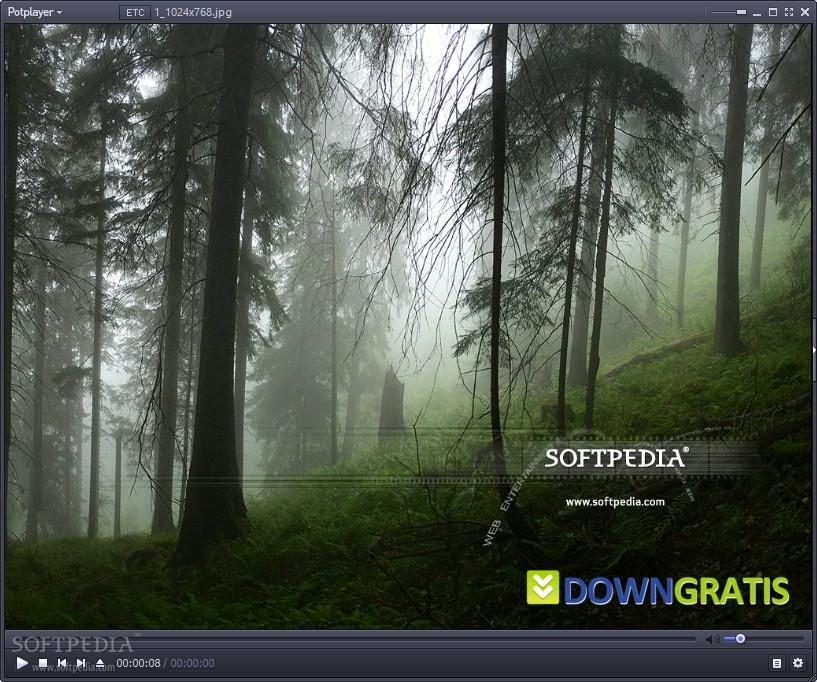 PotPlayer-Review-441465-2